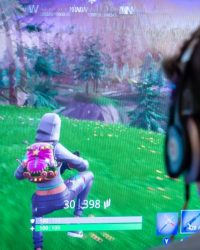 Fortnite sex predator