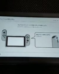 Switch Lite Joy-Con