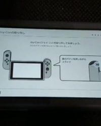 Switch Lite Joy-Con