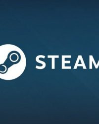 Steam France case