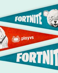 Fortnite Epic Games PlayVS