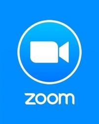 Zoom 30 million