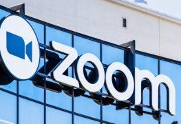 Zoom Hackers