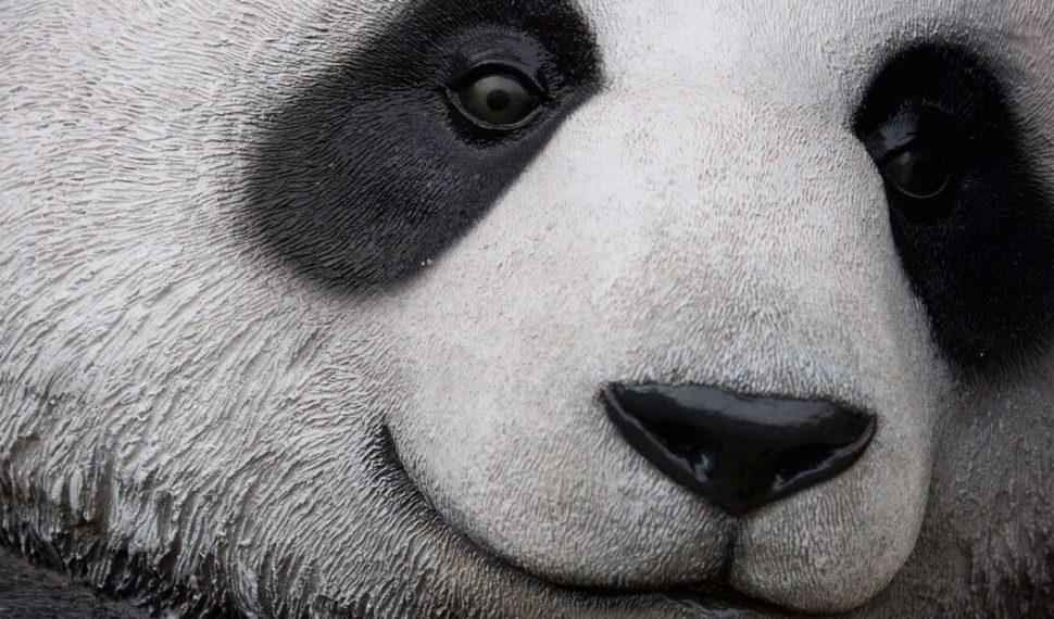 Un malware va tras tus contraseñas de Discord, Steam y otras como panda hambriento
